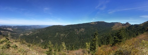 The Grouse Vista trail
