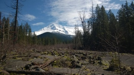 Mount Hood- good luck getting a better shot, this was amazing!