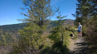 The Grouse Vista trail is just starting to green at 3,000 ft in April