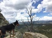 Twin Sisters Peak