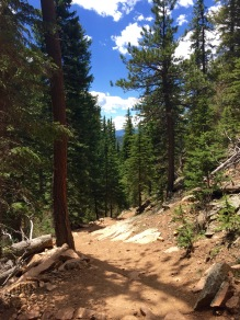 Mason Creek Trail