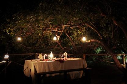 Romantic, candlelit honeymoon dinner in the trees