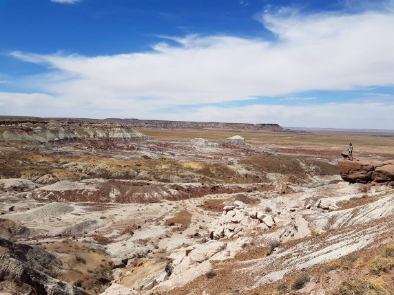 Petrified Forest National Park - painted desert