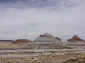 Petrified Forest National Park - painted desert/badlands