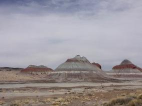 Petrified Forest National Park - painted desert/badlands