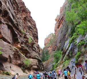 Zion Narrows, walking with a thousand of your closest friends