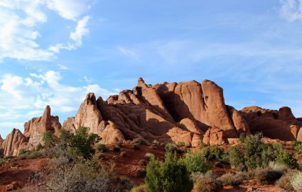 Fins at Arches