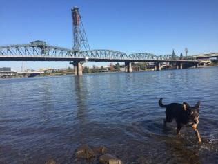 Willamette River - Portland, OR
