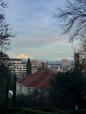 Mt. Hood from Washington Park