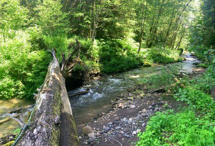 Creek crossing near Ramona Falls