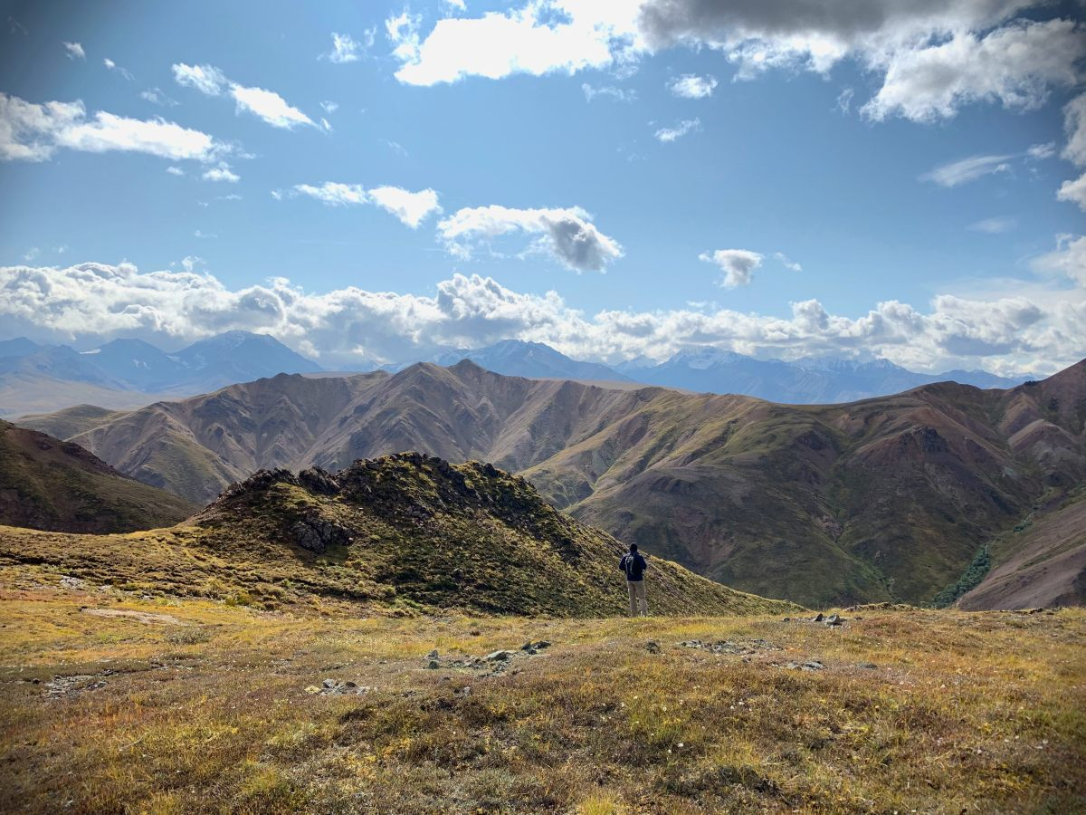 Denali National Park Hikes